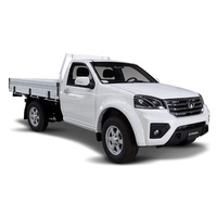 Ute (single cab only) Leather Protection